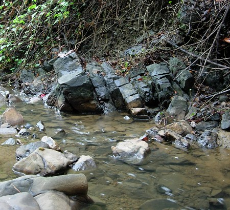 shepherd creek