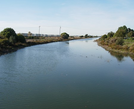 san leandro creek