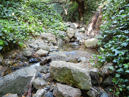 rettig streambed