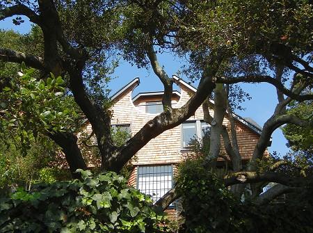 oak and home