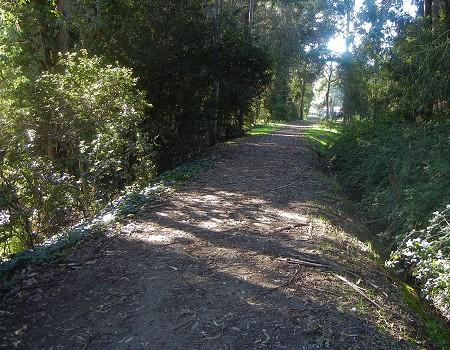mills-railbed