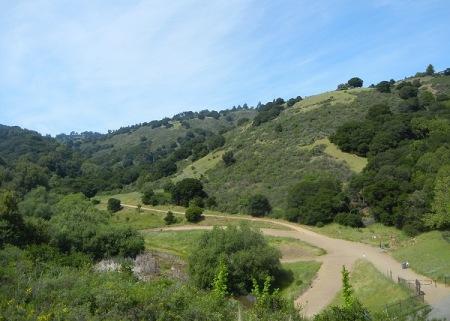 cab-hills9