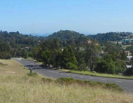 hill1175c