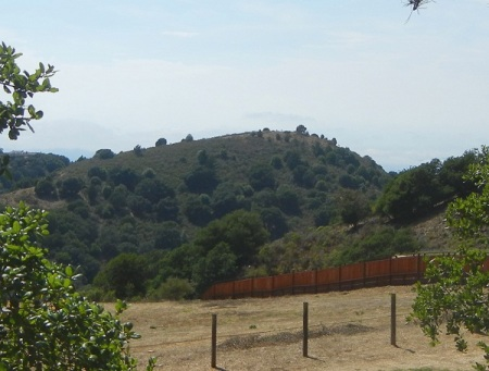 hill1175e