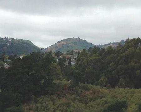 hill1175f