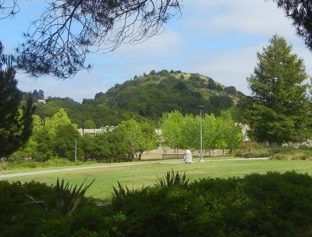 hill1175i