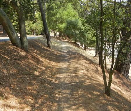 mid-skyline-trail