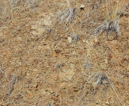 J-basalt-MtnBlvd-at-Fontaine-overcross
