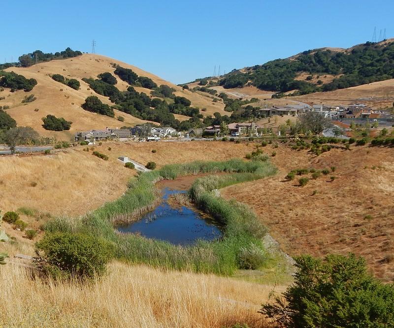 Orinda Oaks: Oakland Geology Ramble 2: Rockridge To Orinda